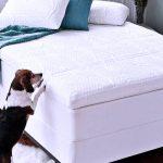best mattress topper for hip pain